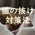 愛猫のエンドレス抜け毛~ストレスなく付き合う方法・対策~