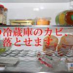 冷蔵庫がカビ臭い!簡単な掃除方法は?カビの原因と対策も!