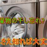 洗濯物を干し忘れた!洗い直しの目安とおすすめの洗剤とは?