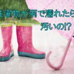 洗濯物が雨に濡れてしまったらどうする?雨が汚いって本当?